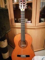 Holz Gitarre mit Chip Tasche