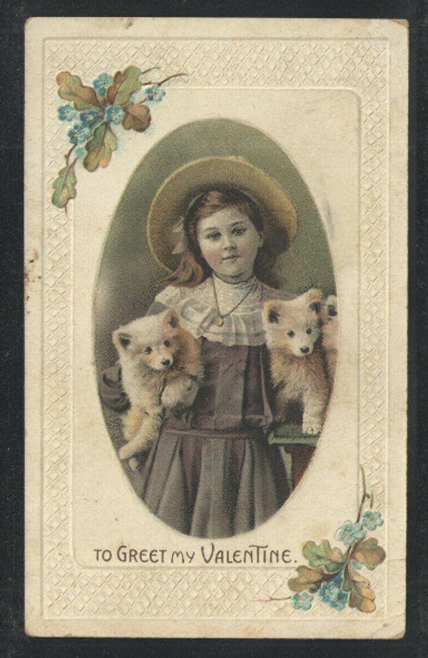 Alte USA Postkarte Bild Welpen