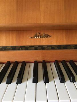 Tasteninstrumente - Sauter Marken-Klavier wenig gespielt guter