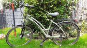 Damem Fahrrad 26 Zoll Prophete