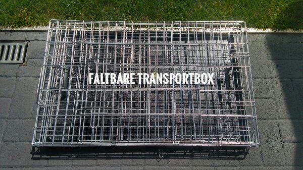 Transportbox NEU