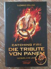 Catching Fire Die Tribute von