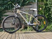Scott Mountainbike