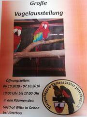 Vogelschau und Vogelverkauf