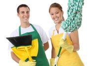 Umfassende Reinigung von Wohnungen und