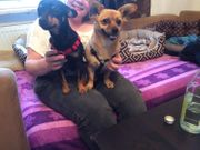 Juki und Pancho