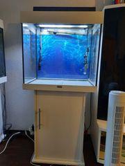 Aquarium Juwel 120 LED