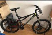 Bergamont Mountainbike Contrail 5 3