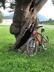 Specialized S-Works Mountainbike