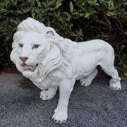 Großer Löwe steht 75 cm