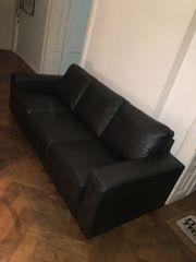 Ikea Skogaby Ledersofa Couch Sofa