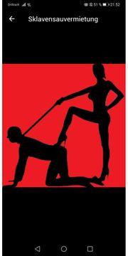 Sklavensauvermietung