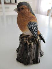 Zwitschernder Vogel mit Bewegungsmelder Höhe