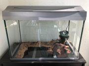 Aquarium Terrarium 54L