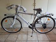 NEU TecnoBike Coolgrey Herren Citybike