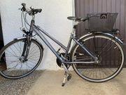 Trekking Bike grau Pegasus Solero