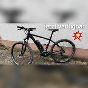 MTB E-bike Morrison Cree 1