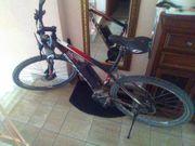 Elektro Mountainbike Scott e-Aspect 29