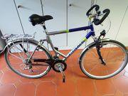 Trekkingbike GIANT Comfort