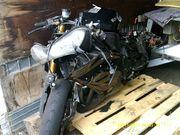 Kawasaki ZXR Ninja Unfallschaden Ersatzteilspender