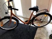 Damen Fahrrad Fischer siehe Bilder