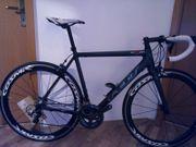 Carbonrennrad FELT Shimano Ultegra 11S
