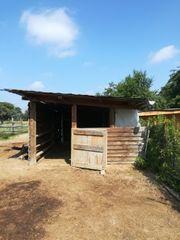 Stall Offenstall Box