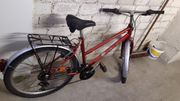Damen Herren Kinder Fahrrad 26