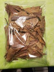 50 gr Seemandelbaumblätter Bruchlaub