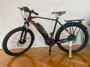 E-Bike Raymon E-Tourray NEU ebike