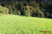 GESUCHT Grundstück Bezirk Feldkirch