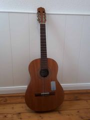 Ariana Ak-65 Akustik-Gitarre