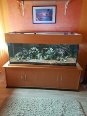 Aquarium 600 l