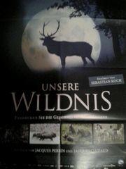 Unsere Wildnis Universum Film Plakat