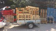 Brennholz Paletten GESUCHT