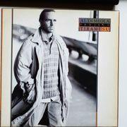 LP-Schallplattensammlung Teil 1 Al Di Meola