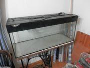 Aquarium ca 100 cm x