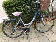 Damen Fahrrad Giant