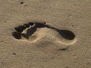 Fuß und Handbilder