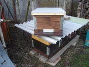 Bienenvölker Carnica Honigbienen