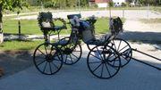 Kutsche Lessing Jagdwagen Kleinpferd