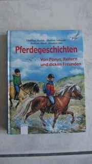 Pferdegeschichten von Ponys Reitern und