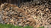 Brennholz Kaminholz