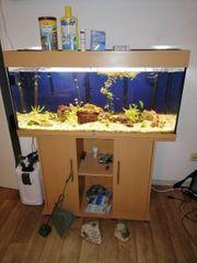 Juwel 180 Liter Aquarium komplett