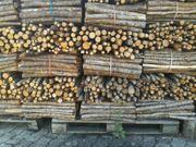 Buscheln aus trockenen Lärchenholz