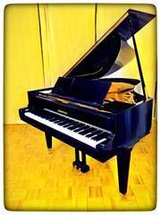 Flügel Klavier Grotrian-Steinweg 185 Lieferung