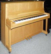 Klavier Astor P20 Eiche hell