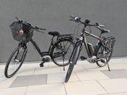 2 x Pegasus Top E-Bike
