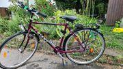 Giant Fahrrad