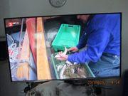 Samsung Fernseher 108 Bildschirmgröße mit